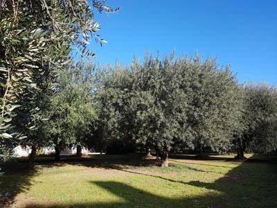 Terrain à bâtir, 550 m² - Carros (06510)