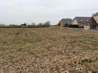 Terrain à bâtir, 1 600 m²