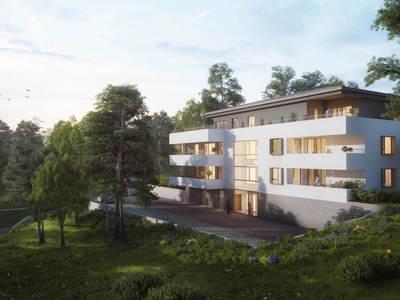 SINGULIERE - Mulhouse (68100)