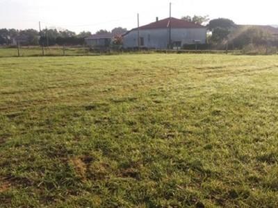 Terrain à bâtir, 1 010 m²