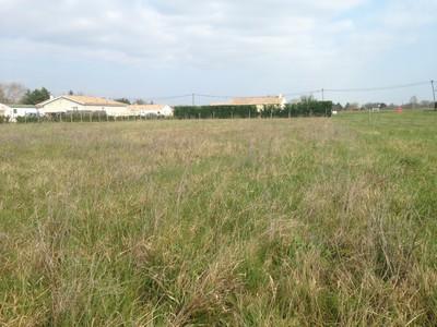 Terrain neuf, 1 000 m²