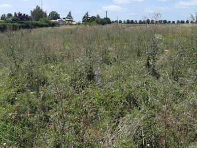 Terrain à bâtir, 450 m² - Port-Saint-Père (44710)