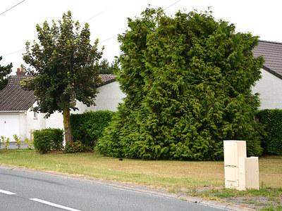 Rue Van Der Meersch