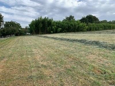Terrain à bâtir, 4 200 m²
