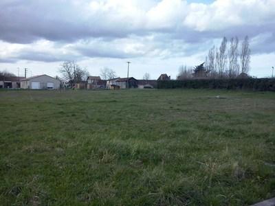 Terrain neuf, 1 320 m²