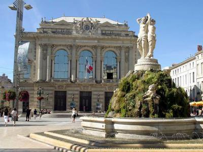 Montpellier Marquerose