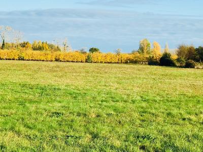 Terrain à bâtir, 2 500 m²