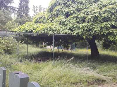 Terrain à bâtir, 508 m²
