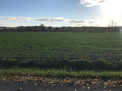 Terrain à bâtir, 2 000 m²